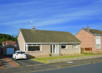 Thumbnail 3 bed detached bungalow for sale in Taybank Drive, Alloway, Ayr