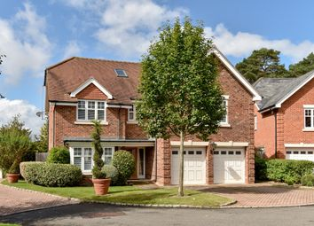 Thumbnail 5 bed property to rent in 5 Chapel Pines, Camberley