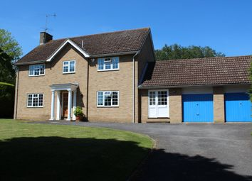 Thumbnail 4 bed detached house to rent in Hardwick Park Gardens, Bury St. Edmunds