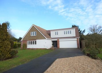 Thumbnail 4 bed property for sale in The Elms, Colyford, Colyton