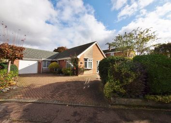 Thumbnail 2 bed detached bungalow to rent in Applegarth Court, Wymondham, Norfolk