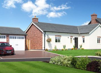 Thumbnail Bungalow for sale in Plot 6 Hunters Chase, Bryn Perthi, Arddleen, Powys