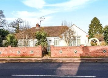 Thumbnail 2 bedroom detached bungalow for sale in Fosters Lane, Woodley, Reading