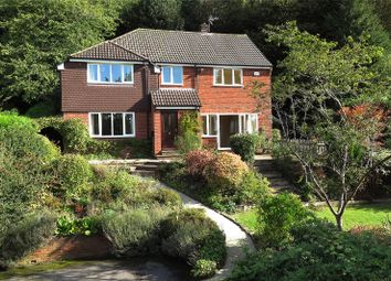 Thumbnail 4 bed detached house to rent in Woodlands Lane, Haslemere, Surrey