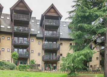 Thumbnail 4 bedroom flat for sale in Knowle Lane, Sheffield