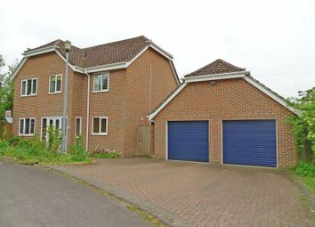 Thumbnail 4 bed detached house for sale in St. Edwards Meadow, Winterbourne Dauntsey, Salisbury