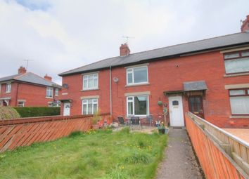 Thumbnail 2 bed terraced house to rent in Willard Grove, Stanhope, Bishop Auckland