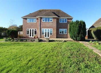 Thumbnail 4 bed detached house to rent in Salterton Road, Exmouth, Devon.