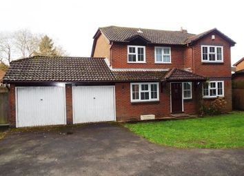 Thumbnail 4 bed detached house to rent in Brooklynn Close, Waltham Chase, Southampton