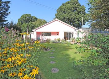 Thumbnail 2 bed detached bungalow for sale in Clyst Hydon, Cullompton