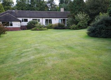 Thumbnail 5 bedroom detached bungalow to rent in Bank Hill, Woodborough, Nottingham