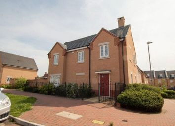 Thumbnail 4 bed detached house to rent in Kensington Road, Colchester