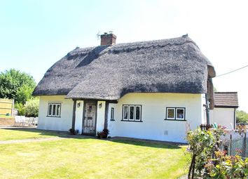 Thumbnail 3 bed cottage for sale in Aythorpe Roding, Dunmow, Essex