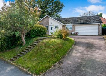 Thumbnail 3 bed bungalow for sale in Stanton, Suffolk