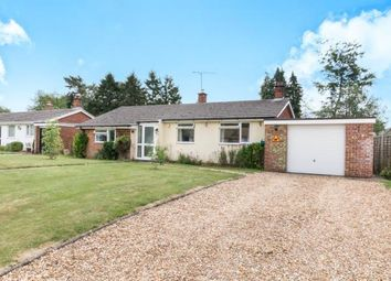 Thumbnail 3 bed bungalow for sale in Four Marks, Alton, Hampshire