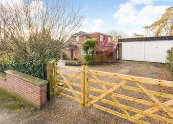 Thumbnail 4 bed detached house for sale in Fox Covert Close, Ascot