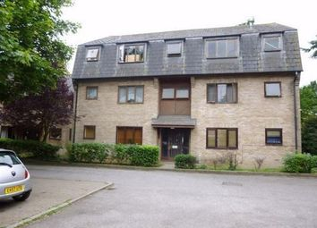 Thumbnail Flat to rent in Wingrove Court, Chelmsford