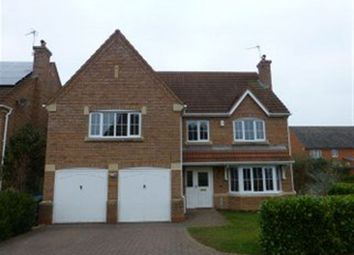 Thumbnail 4 bed detached house to rent in Gold Avenue, Rugby, Warwickshire