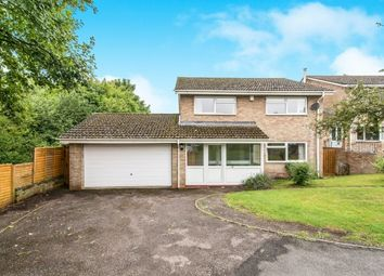 Thumbnail 4 bed property to rent in Lordsfield Gardens, Overton, Basingstoke
