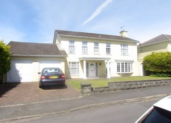 Thumbnail 4 bed detached house to rent in Cronk Drean, Douglas, Isle Of Man