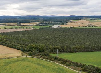 Thumbnail Land for sale in Hardmuir, Brodie, Moray