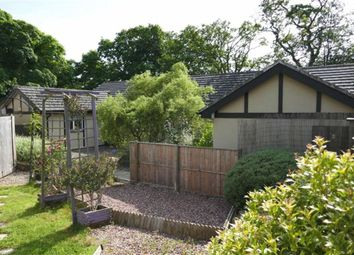Thumbnail 4 bed property for sale in Halwill, Beaworthy