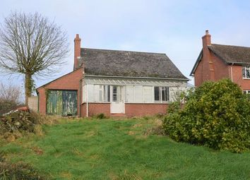 Thumbnail 1 bed detached bungalow for sale in Talewater, Talaton, Exeter