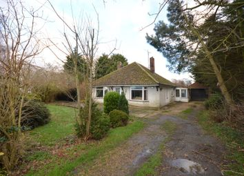 Thumbnail 3 bed detached bungalow for sale in Hadley, The Hollow, Ramsey, Huntingdon, Cambridgeshire