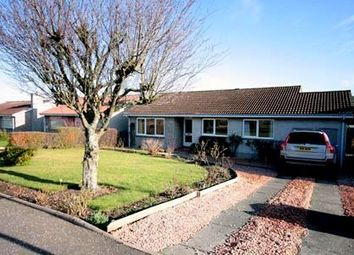Thumbnail 4 bed detached house to rent in Muirend Avenue, Perth