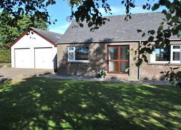 Thumbnail 3 bed detached bungalow to rent in Colliston, Arbroath