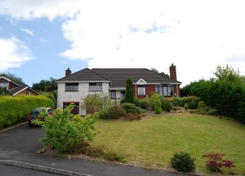 Thumbnail 5 bed detached bungalow for sale in Hampton Court, Dromore