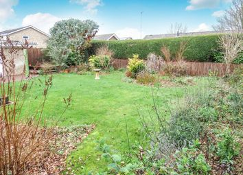 Thumbnail 3 bed detached bungalow for sale in Willow Avenue, Fordingbridge