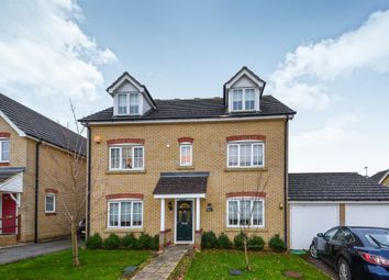Thumbnail 5 bed detached house for sale in Bulrush Avenue, Downham Market