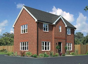 Thumbnail 3 bedroom detached house for sale in Fern Hill, Barnston Mews, Farndon