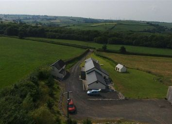 Thumbnail 3 bed property for sale in Llandyfaelog, Kidwelly