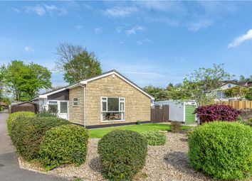 3 bed detached bungalow for sale in Willhayes Park, Axminster, Devon EX13
