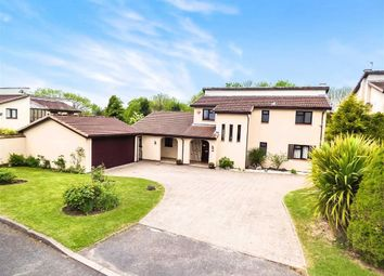 Thumbnail 4 bedroom detached house for sale in Punta Verde Drive, Great Hay, Telford, Shropshire