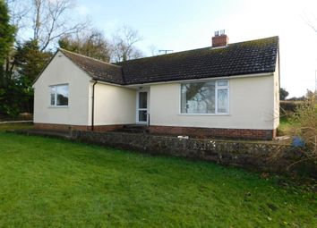 Thumbnail 3 bed detached bungalow to rent in Hawkchurch, Axminster