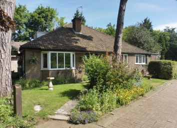 Thumbnail 4 bed detached bungalow for sale in Mount Pleasant, Uppingham Road, Oakham