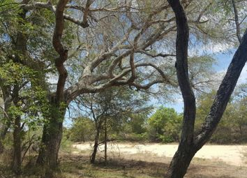 Thumbnail Land for sale in Moditlo Private Game Reserve, R40, Hoedspruit, 1380, South Africa