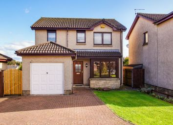 Thumbnail 3 bed detached house for sale in Walnut Grove, Leven