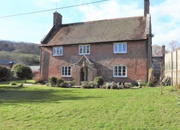 Thumbnail 5 bed country house to rent in Winterborne Houghton, Blandford Forum