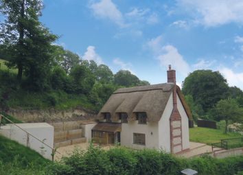 Thumbnail 4 bed detached house for sale in Chalky Path, Winterborne Stickland, Blandford Forum