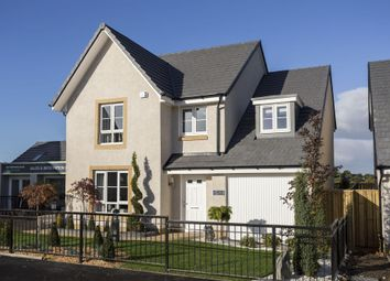 "Thumbnail 4 bedroom detached house for sale in ""Drummond"" at Drip Road, Stirling"