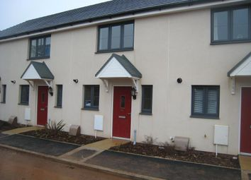 Thumbnail 2 bed terraced house to rent in Mimosa Way, Paignton, Devon