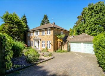 Thumbnail 4 bed detached house to rent in Branksome Close, Camberley