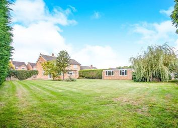 Thumbnail 5 bed detached house for sale in Witchford, Ely, Cambridgeshire