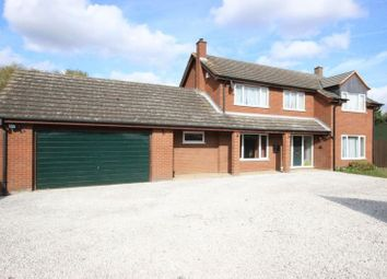 Thumbnail 4 bedroom detached house for sale in Blunham Road, Moggerhanger, Bedford