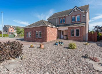 Thumbnail 5 bed detached house for sale in Eider Close, Montrose