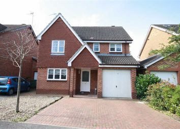 Thumbnail 4 bed detached house to rent in Ascott Close, Beverley